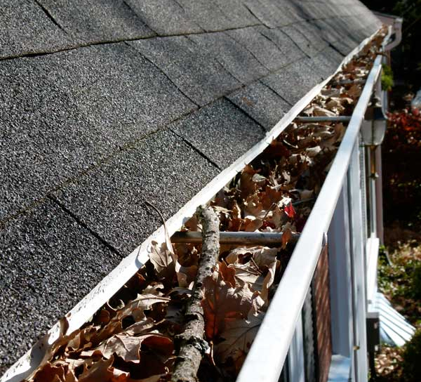 Debris in your gutters can cause serious problems
