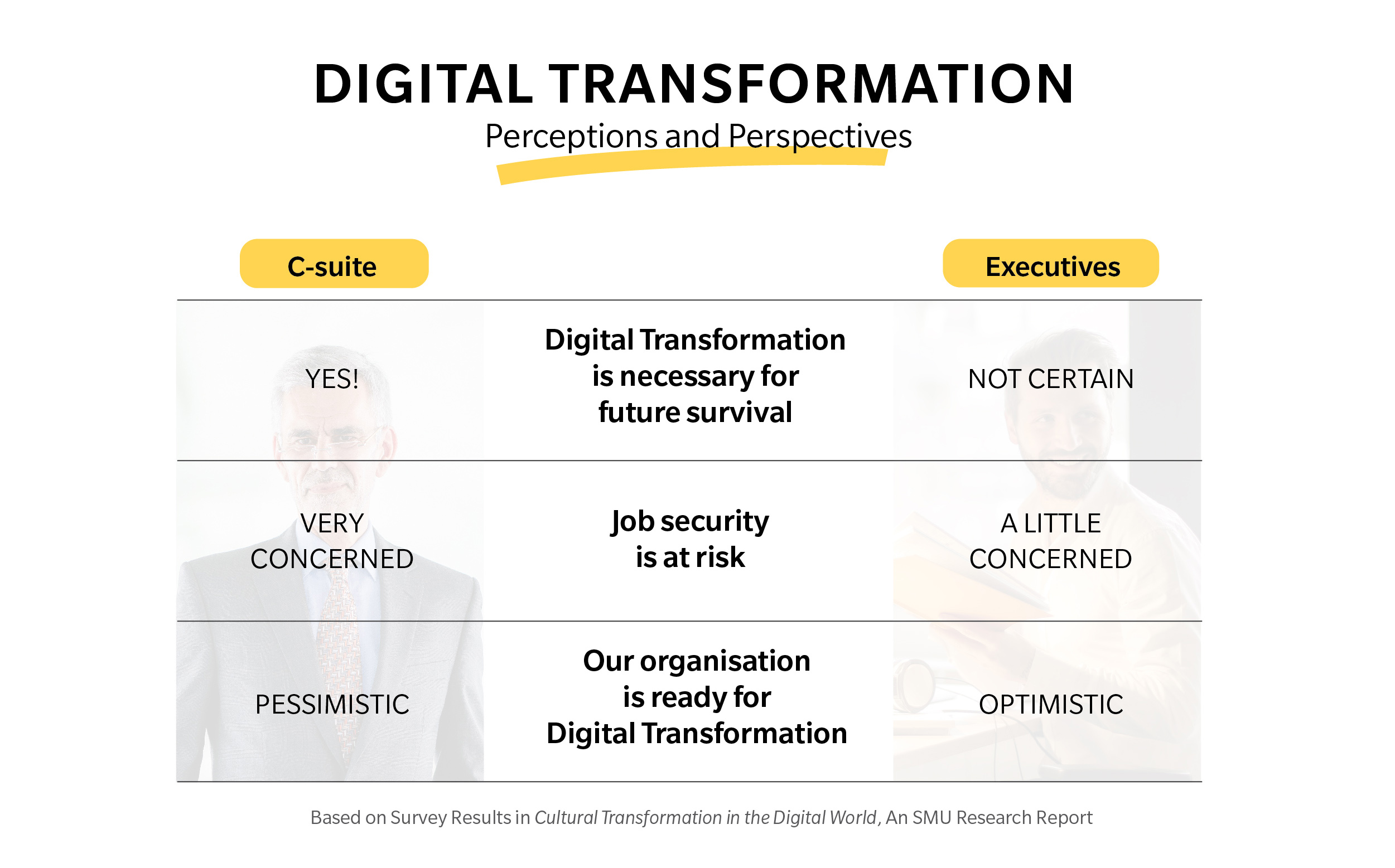 Digital Transformation Perceptions and Perspectives