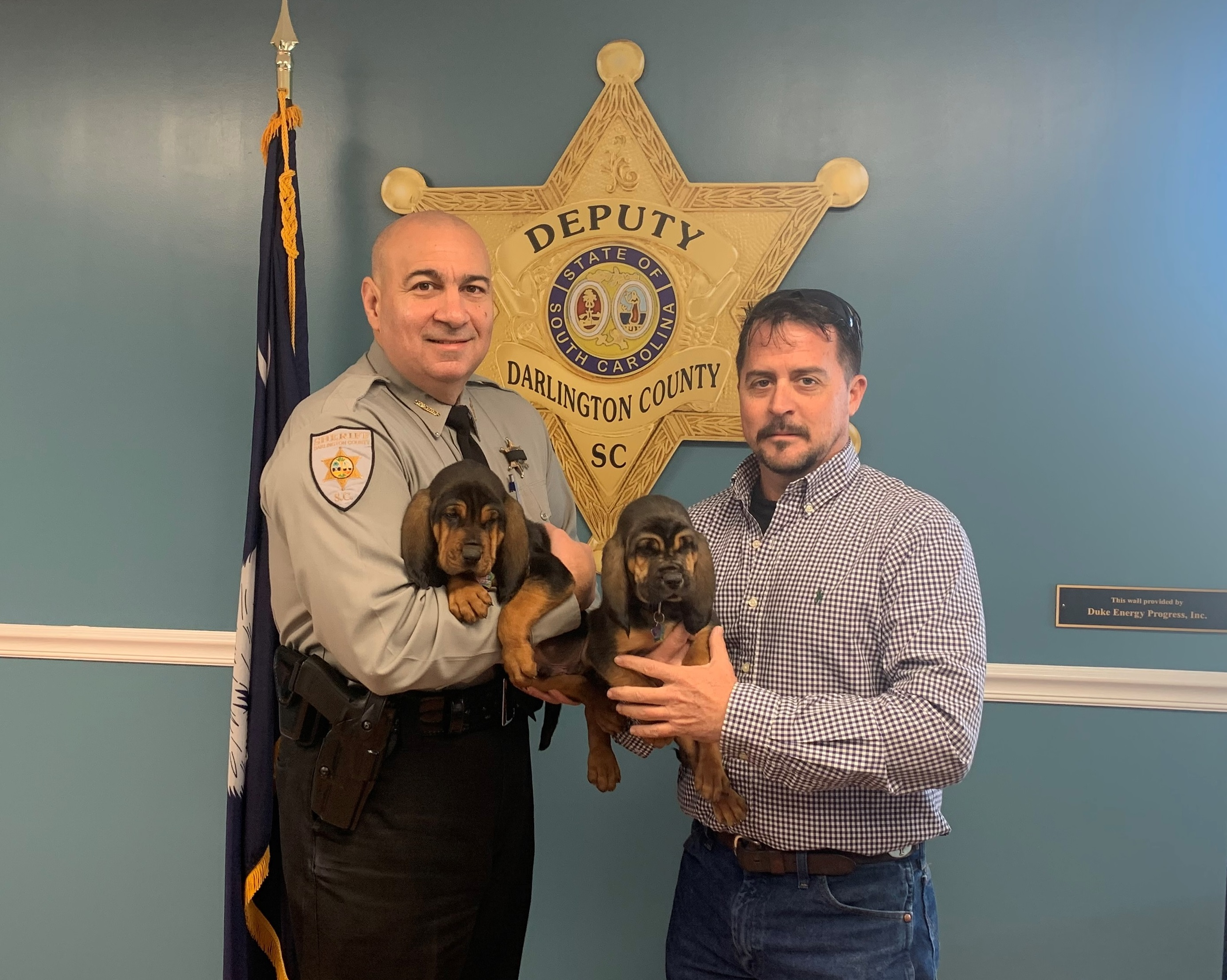 Sheriff Presented Two Bloodhound Puppies - Darlington County Sheriffs Office-8499