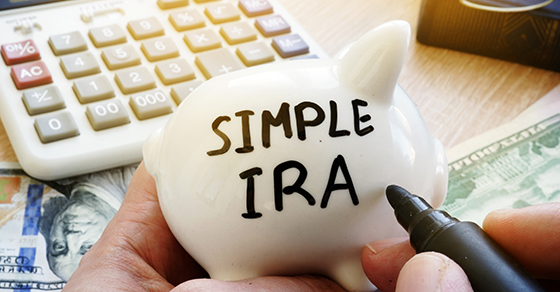Simple IRA being written on a small ceramic piggybank