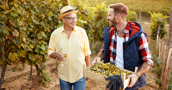 older man and younger man walking in vineyard