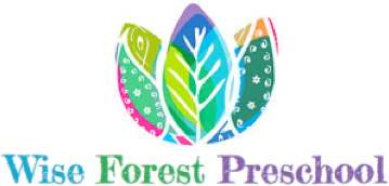 wise forest preschool