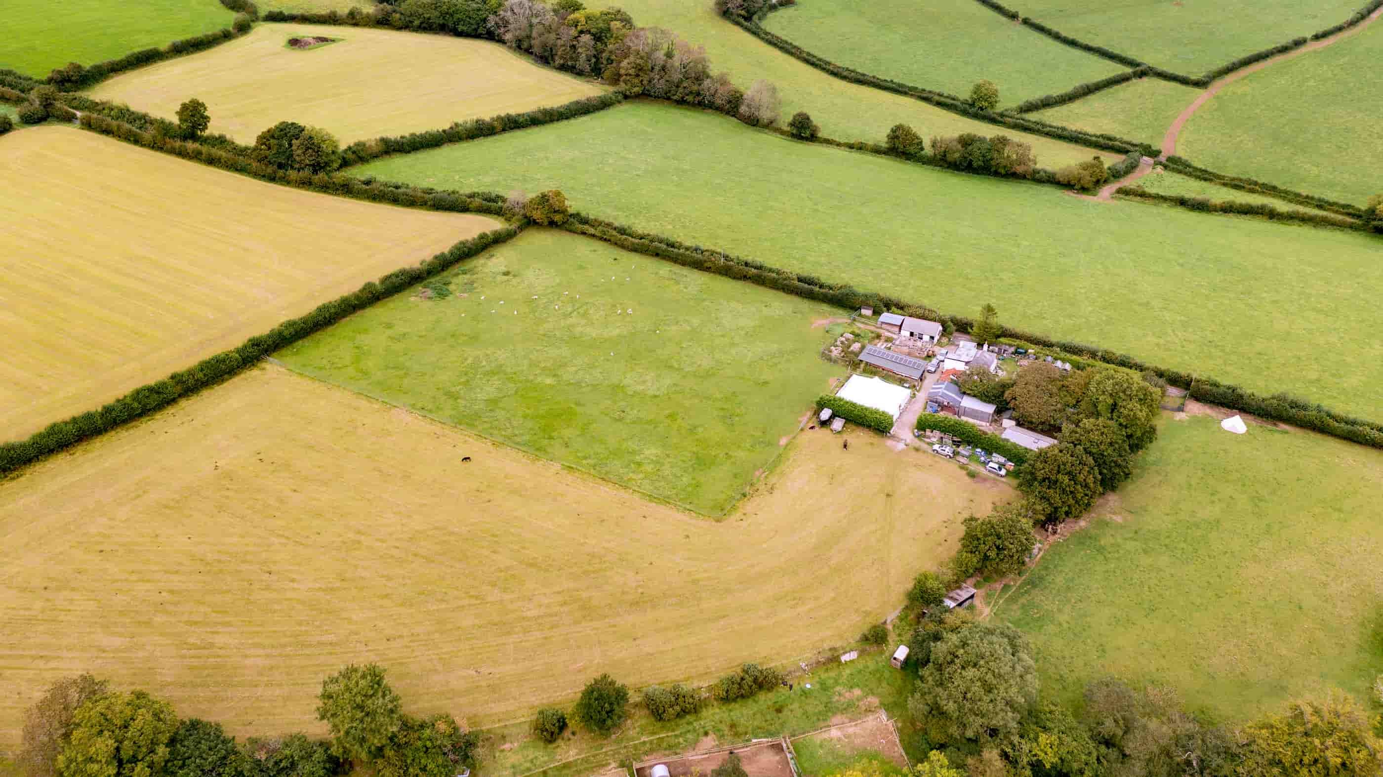 drone services for farm