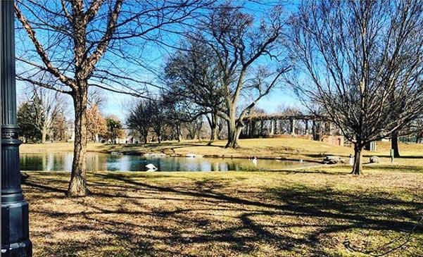 Schiller Park pond