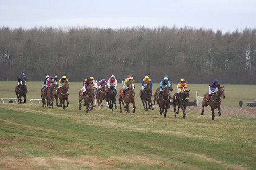 Beaufort Races & Country Fair