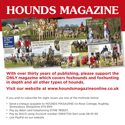 Beaufort Bike Behind Hounds