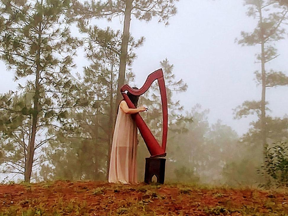 The Versatility of the Camac Harp