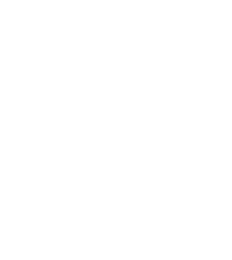 Bar Maze logo
