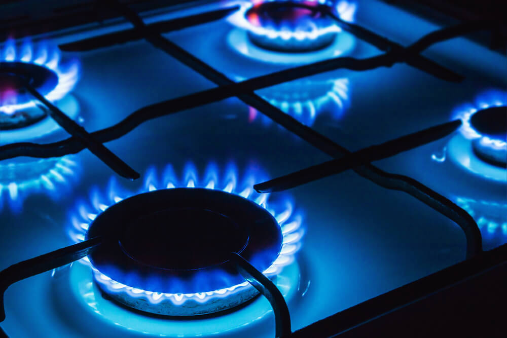 Domestic gas appliance