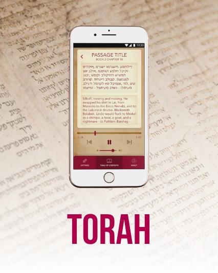 UI/UX design for torah study app