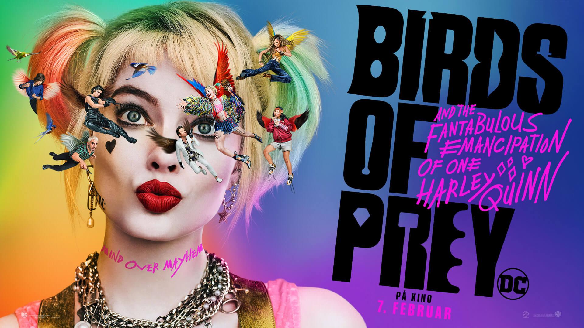 Kino Birds Of Prey