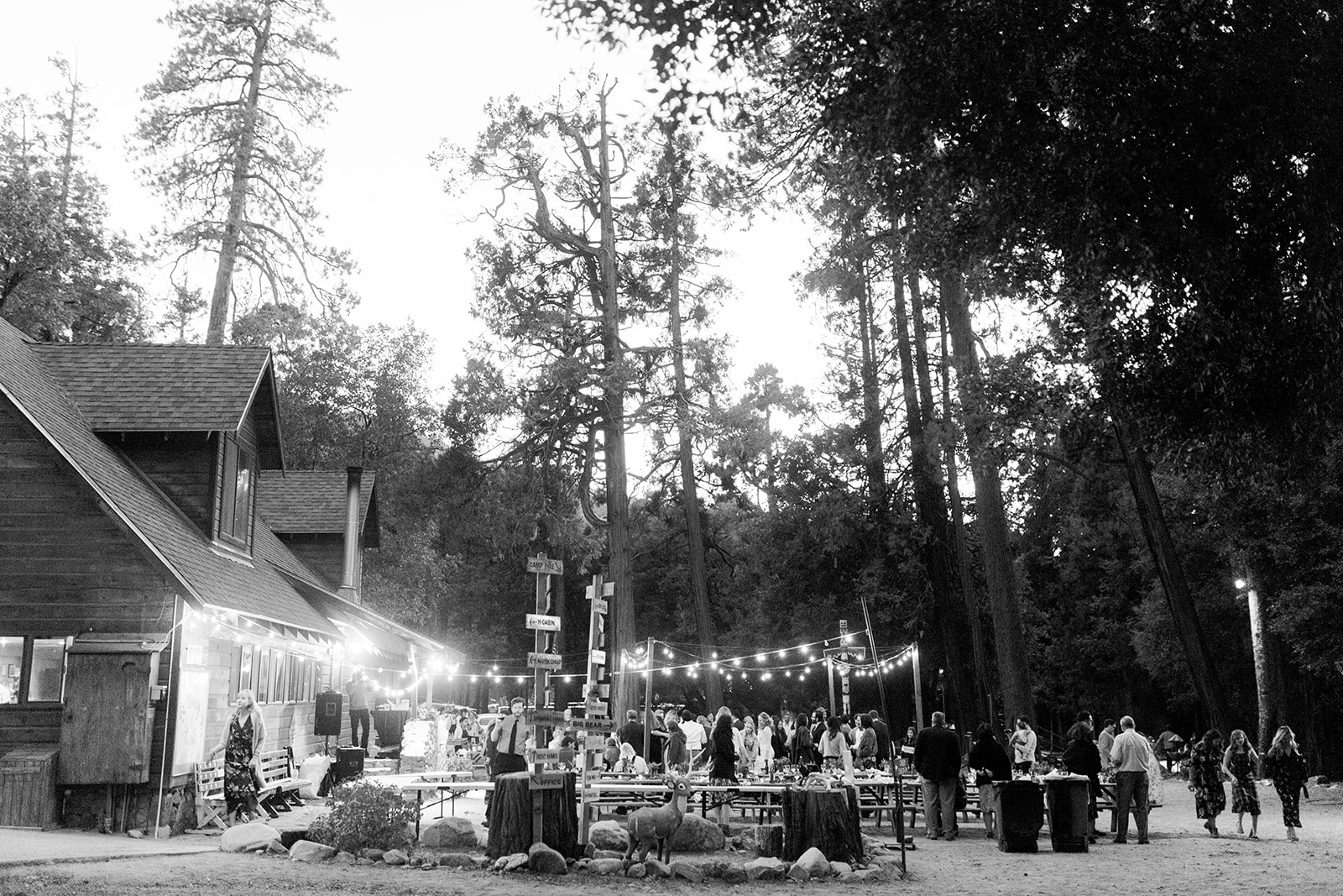 Camp Weddings Southern California