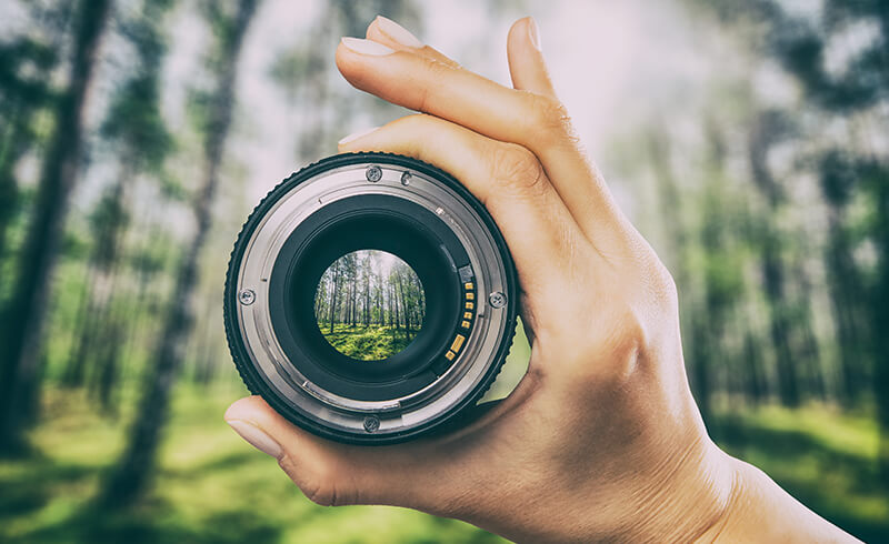 Close-up of a hand holding a camera lens in front of a forest. The forest is blurred out, but through the camera lens, the forest appears clear and focused.