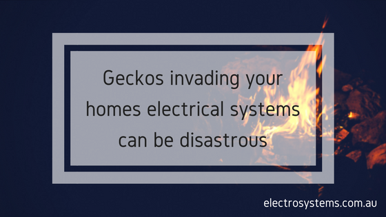 Gecko related electrical problems
