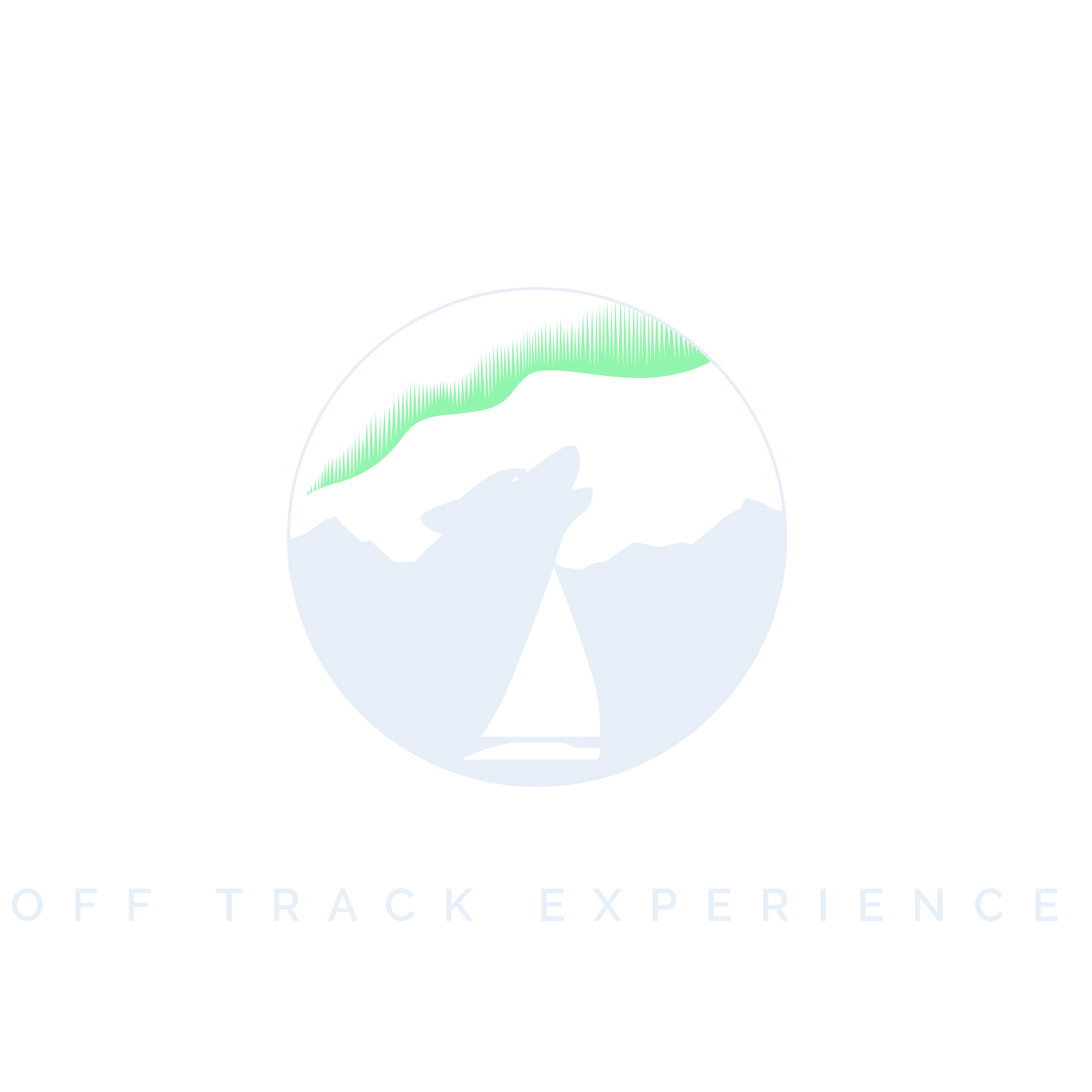 Off Track Experience
