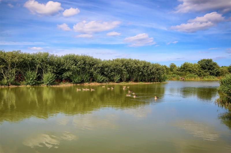 Willow Lakes Bodham (2)