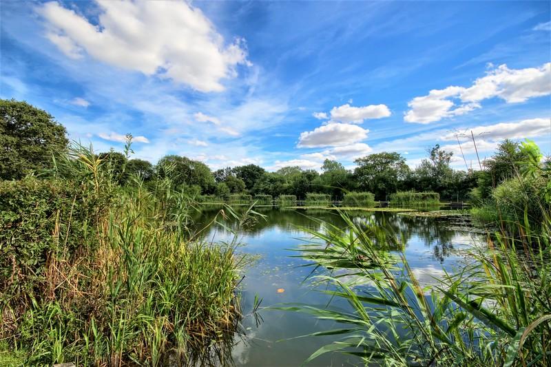 Willow Lakes Bodham (4)