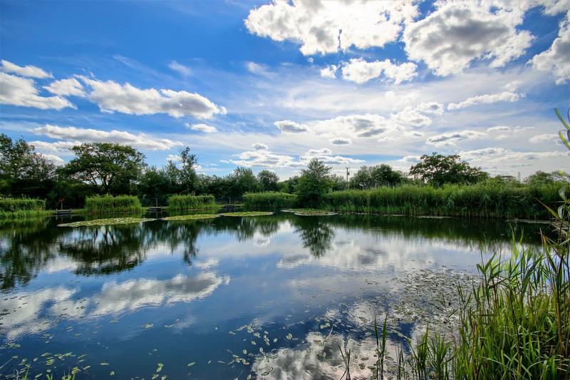 Willow Lakes Bodham (5)