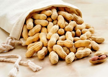 Peanuts are a common food allergen.