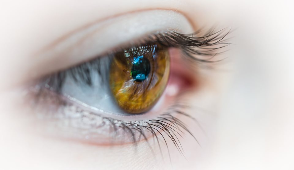 Ask the Expert: Vision Health as You Age