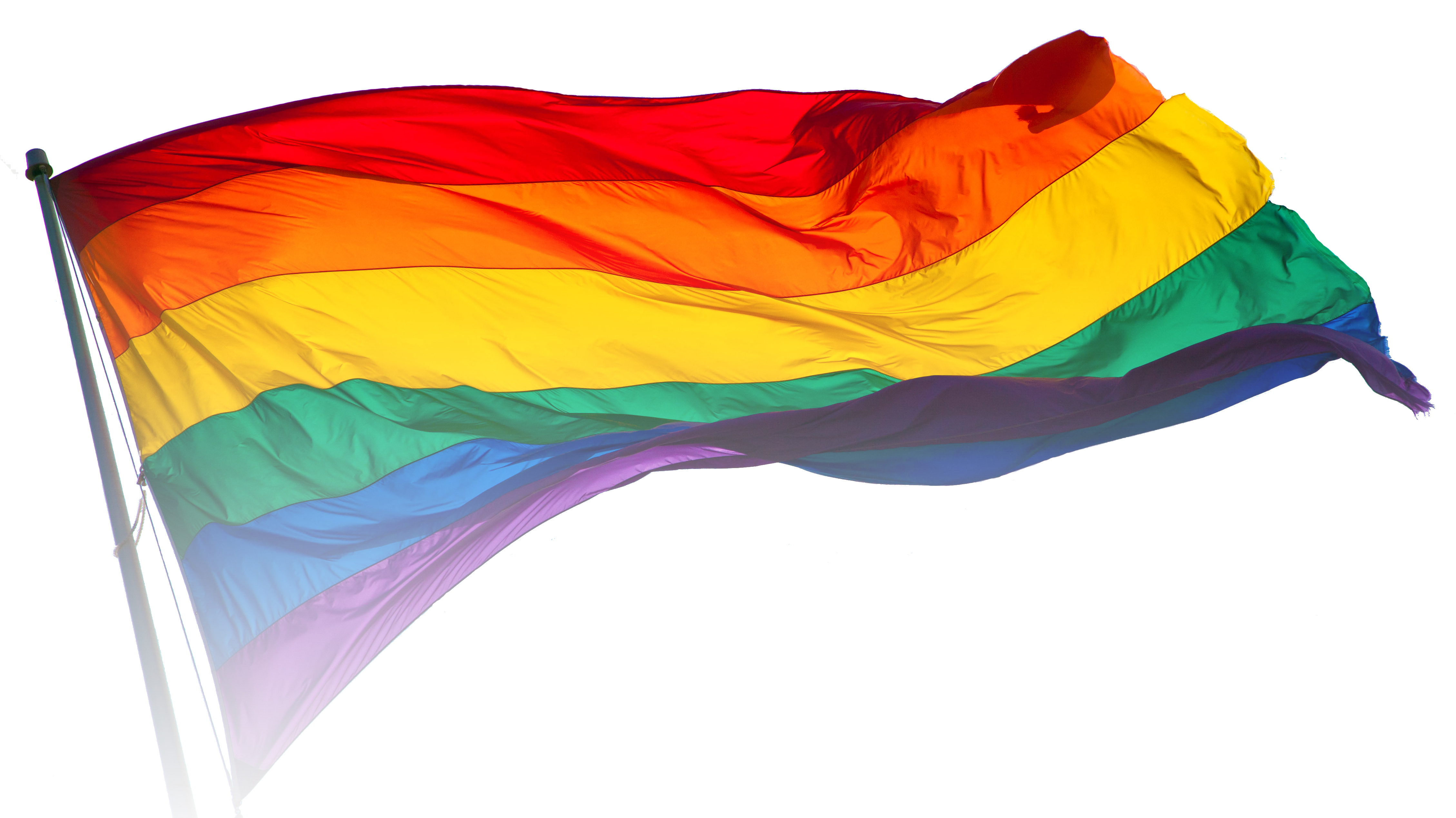 Study Affirms LGBTQ People are More Likely to Have a Disability than the General Population