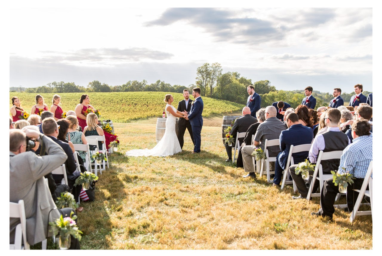 Top Country Wedding Songs From Maryland S Dj Dj Thoughts,Pictures Of Ducks In Michigan