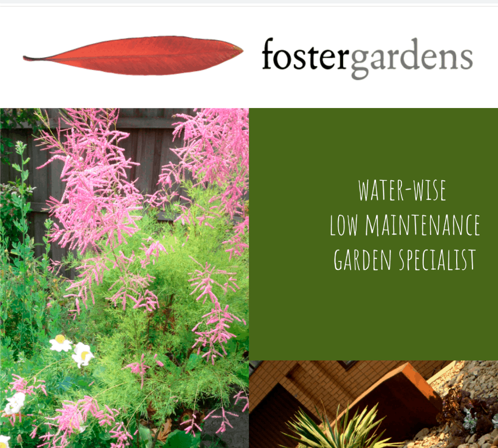 Website update: foster gardens
