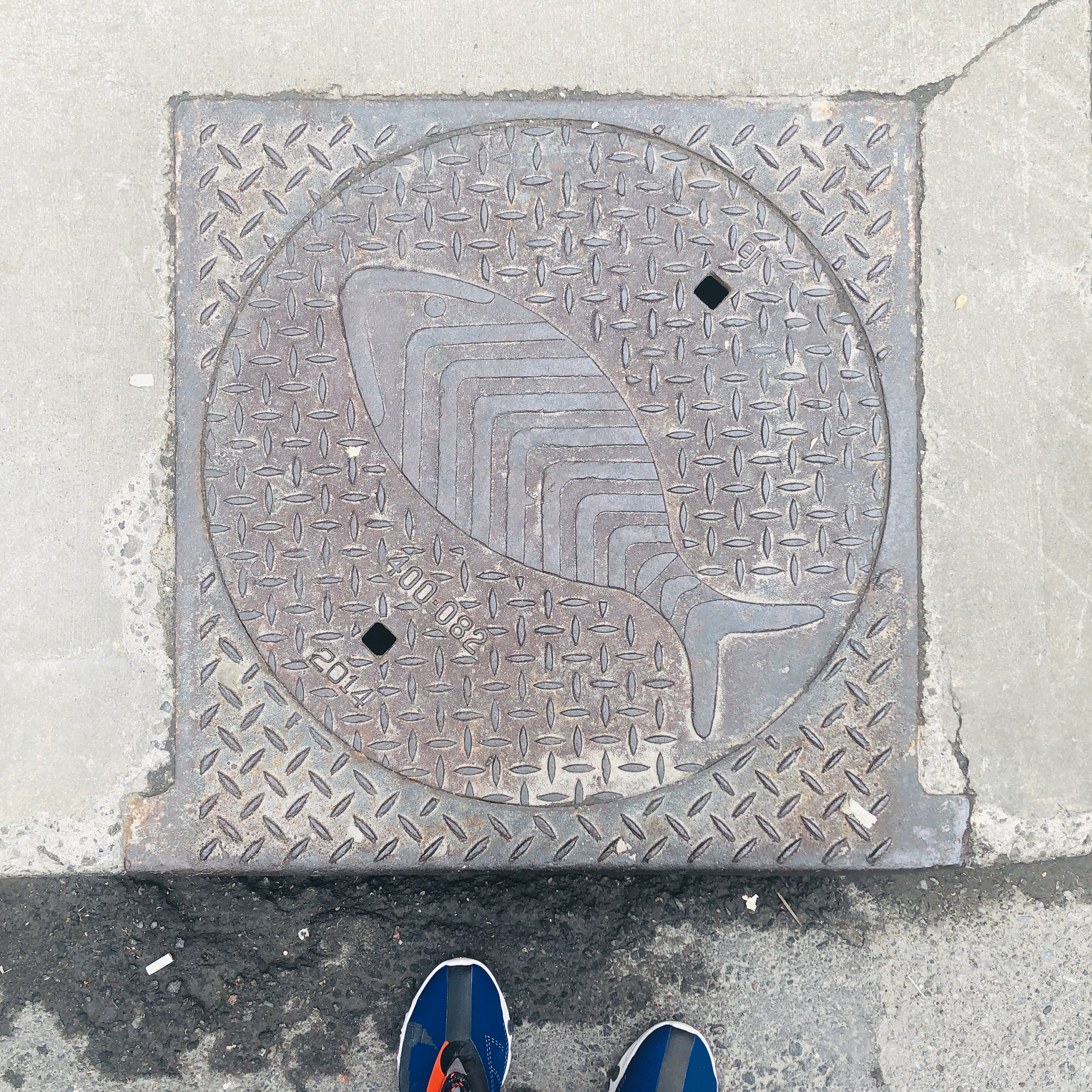 manhole cover with fish and pattern