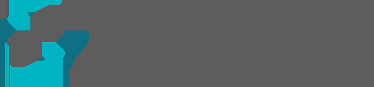 Datora WebSystems Logo