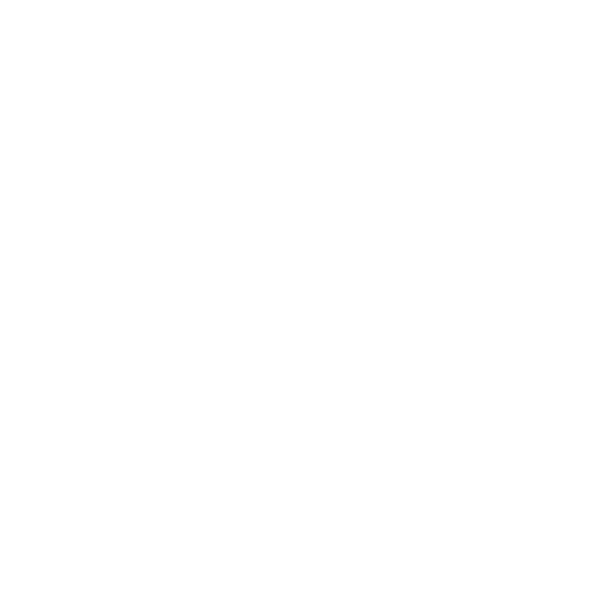 checked list symbol