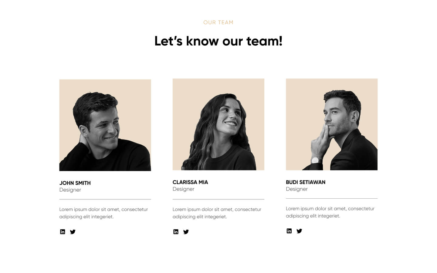 Integrate this team section with your own webflow CMS with ease.