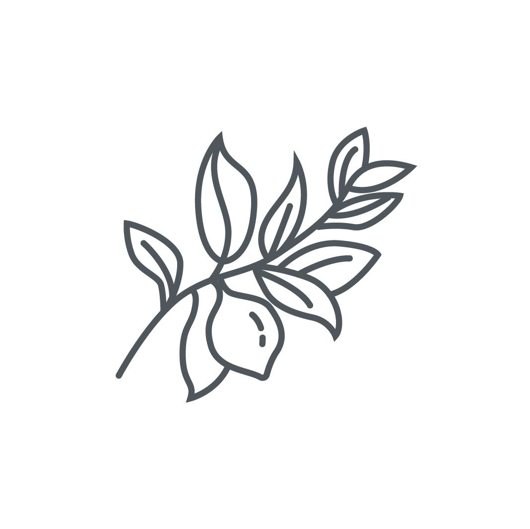 Oak Citrus