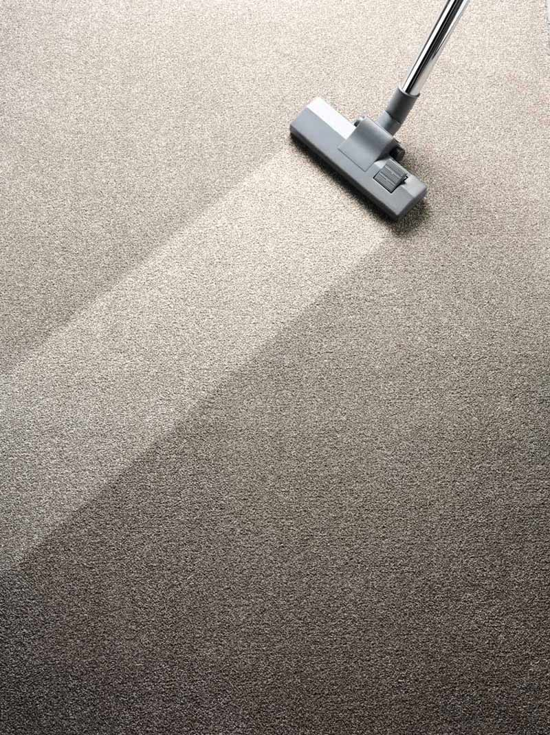 Professional carpet cleaning in the South Bay