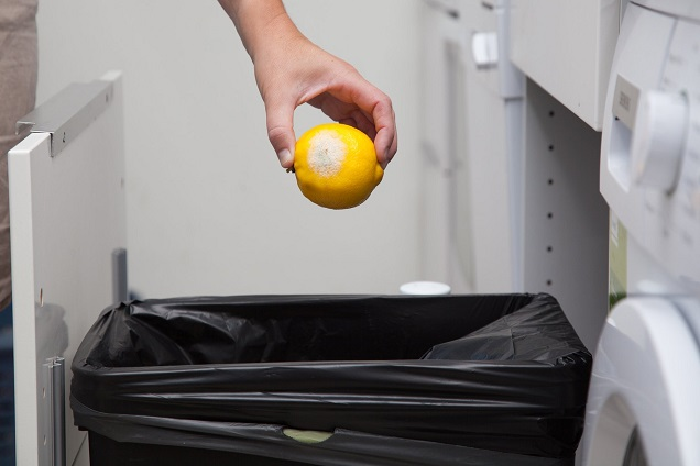 putting lemon on trash bins