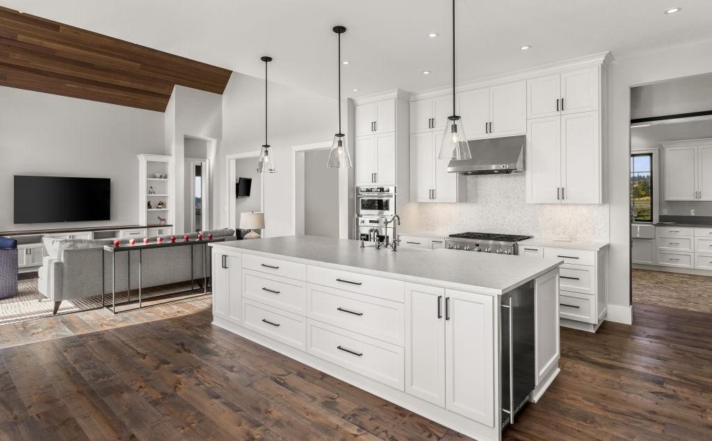 A modern kitchen renovation