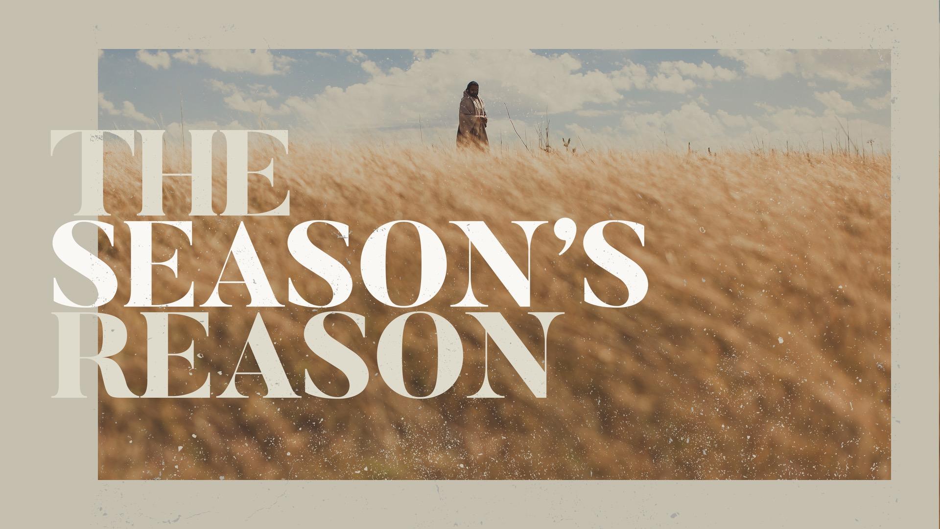 The Season's Reason - Easter
