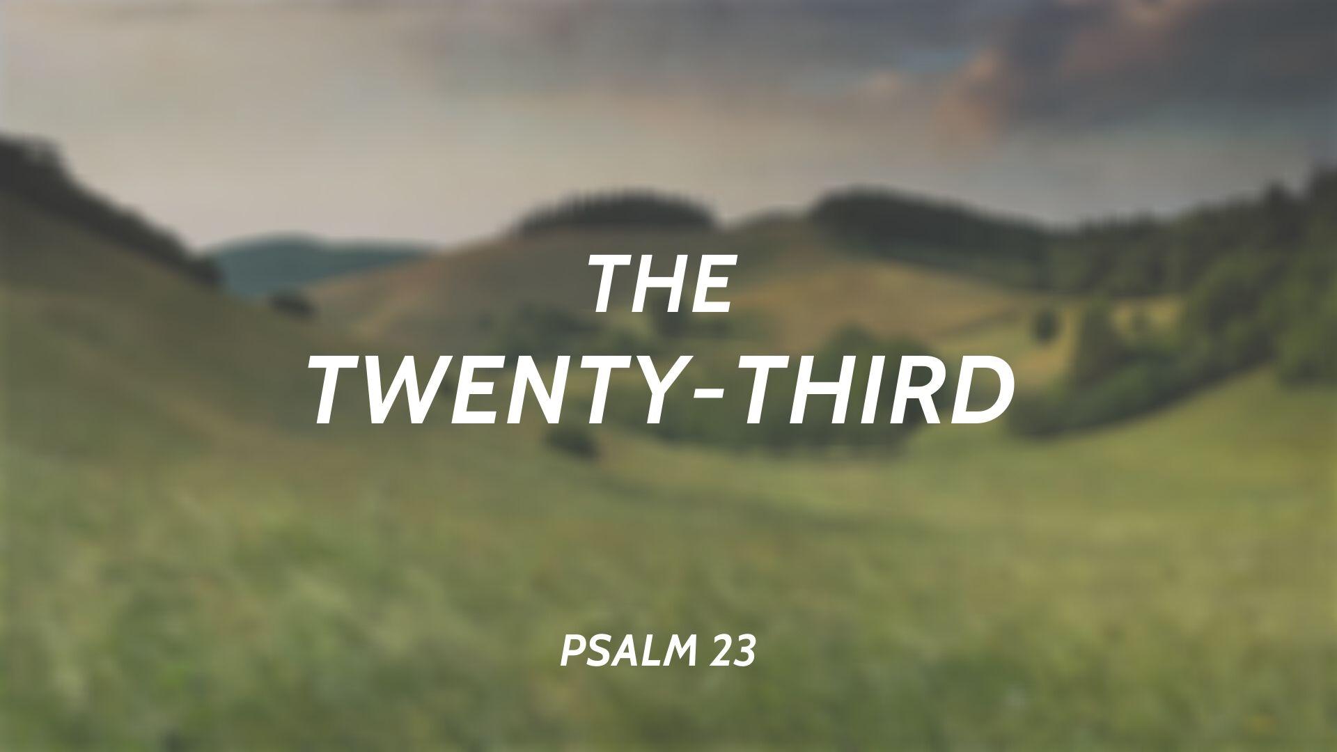 The Twenty-Third