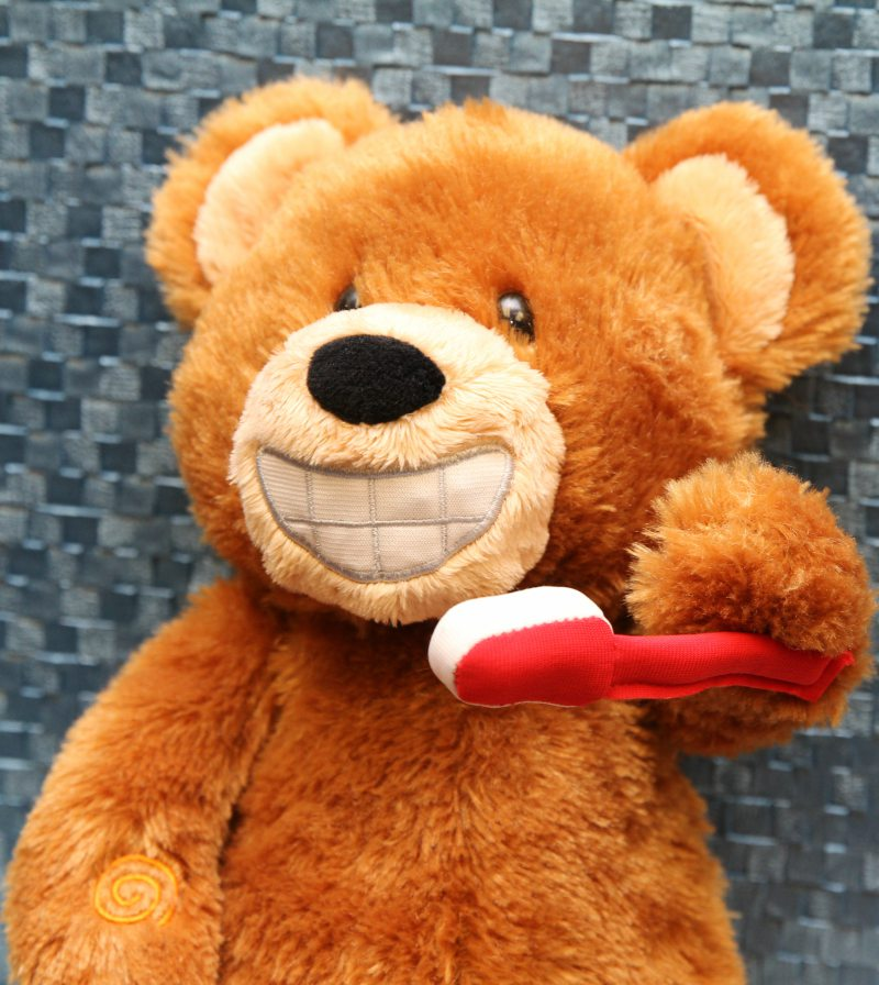 teddy bear smiling and holding tooth brush