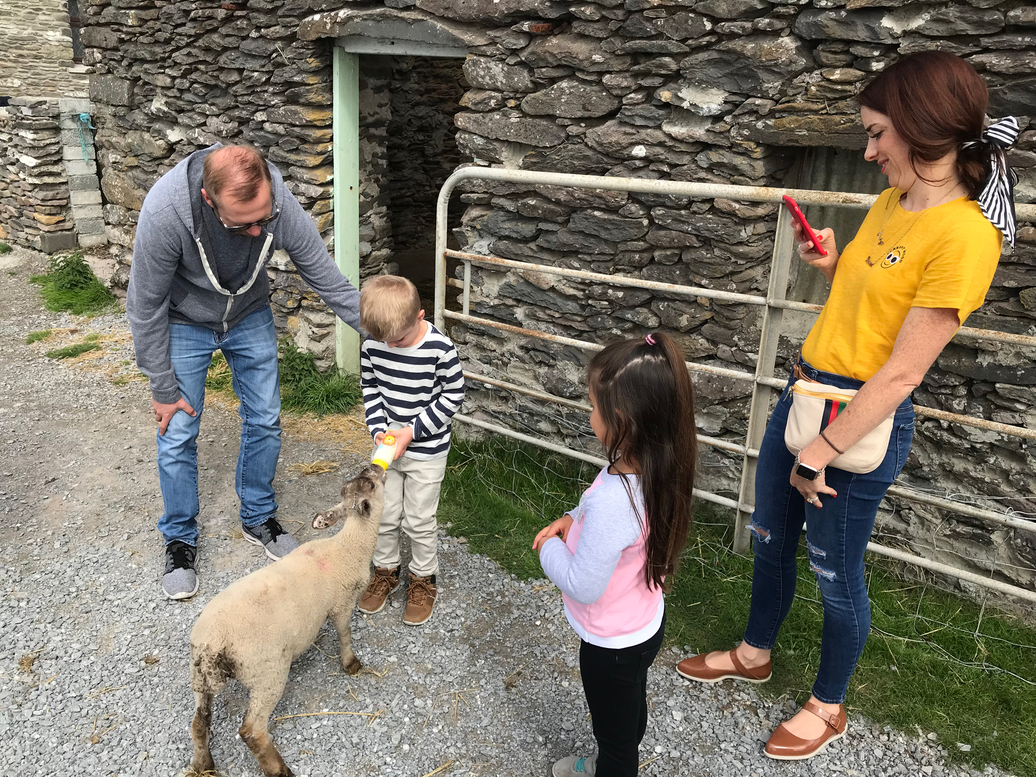 A boy feeds a baby lamb from a bottle as his father and sister look on. Always one of the most popular activities on our Wild Atlantic Essential Ireland Tours
