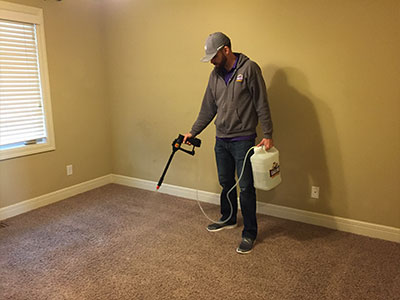Applying stain guardian ultra in Manhattan, KS