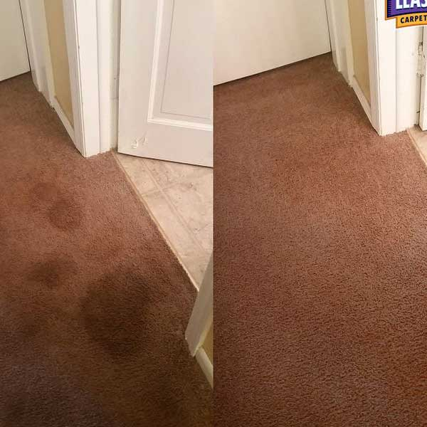 Pet stain removal by Lease End Carpet Cleaning
