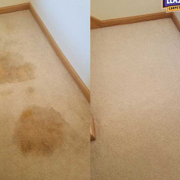 Pet stain removal before and after photo