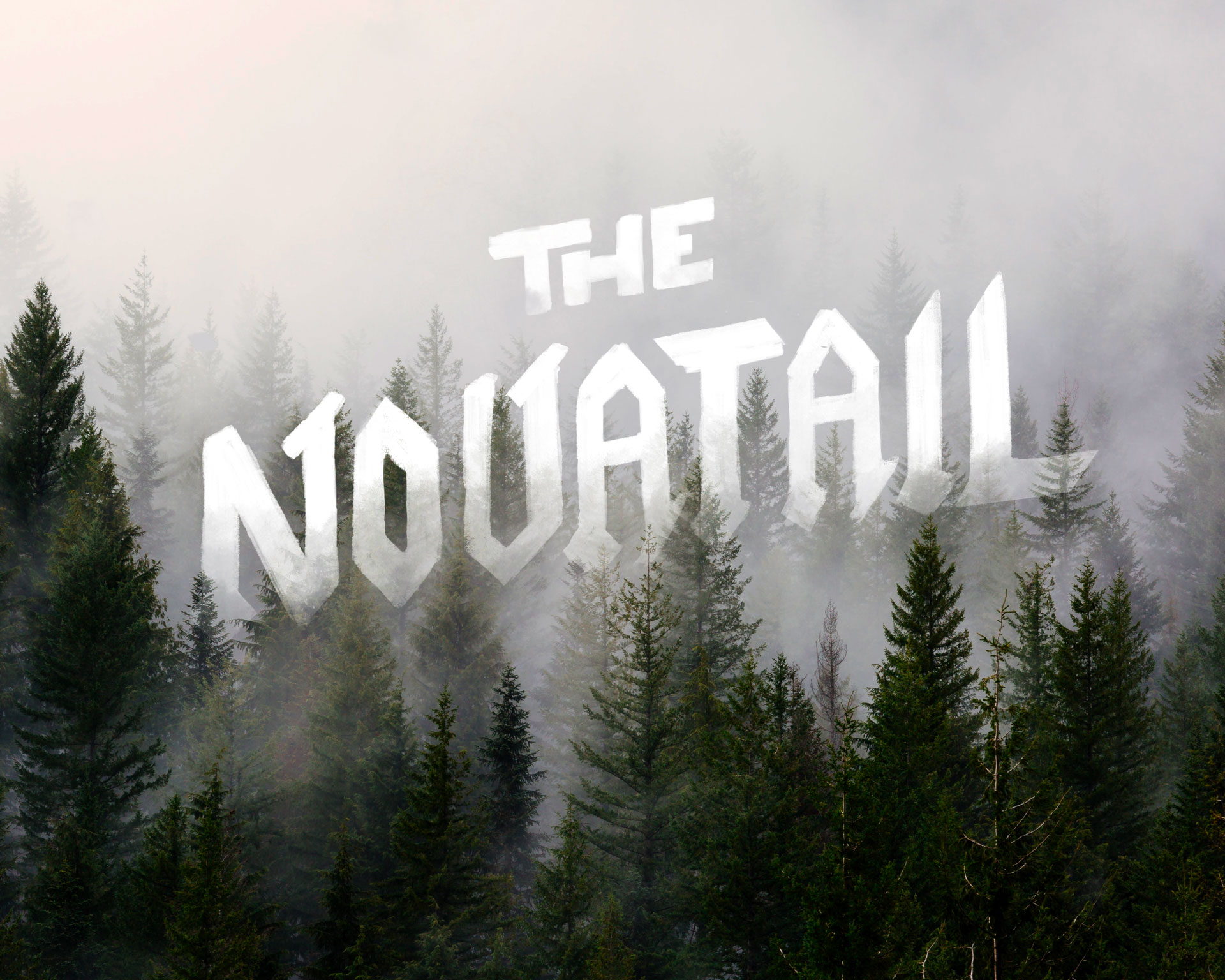 ABout us novatail