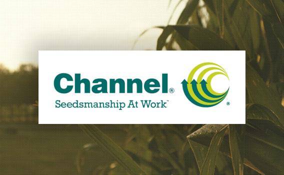 channel seed logo