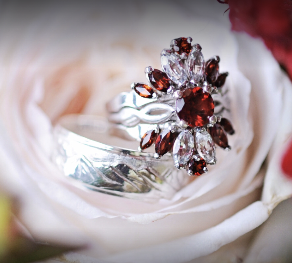 red and silver rings on a pink rose