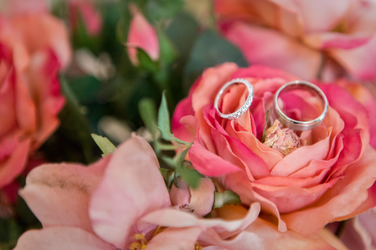 an engagement ring and wedding band on pink roses