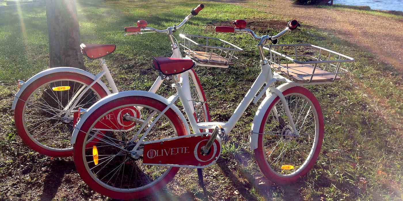 White and red retro bicycles with Olivette branding applied, parked next to the French Broad River during sunset.