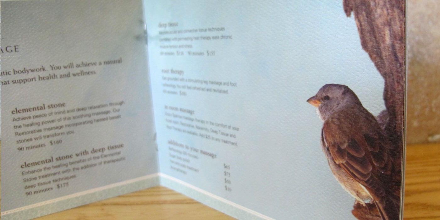 Sparrow Spa menu with list of services and sparrow bird in corner.