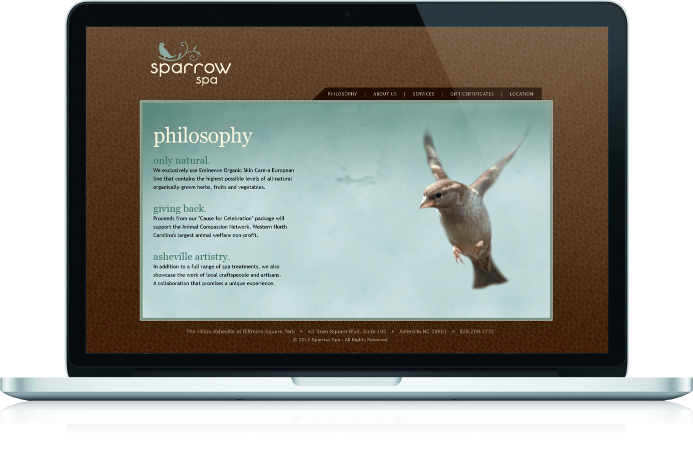 Sparrow Spa About page for website shows a sparrow in flight against a blue background.