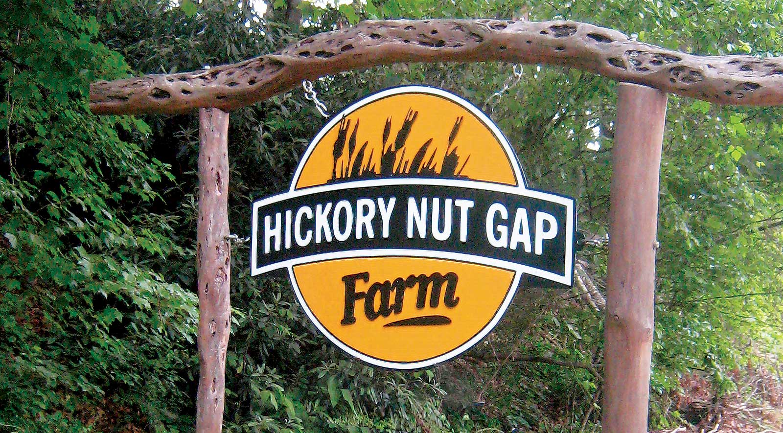 Hickory Nut Gap Farm sign painted in black, white and orange paint hangs from wooden posts, with green lush trees in background.